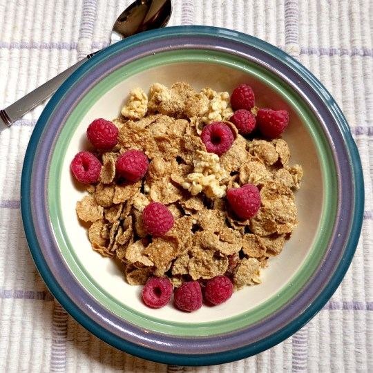 Maple Pecan Cereal