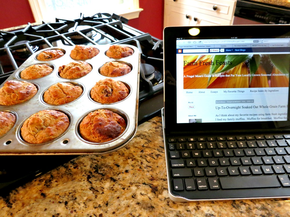 Squash Blackberry Muffins