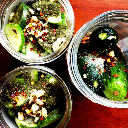 Pickling Cucumbers - Pickles