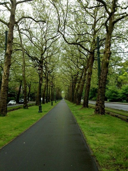 Belgium Walking Path