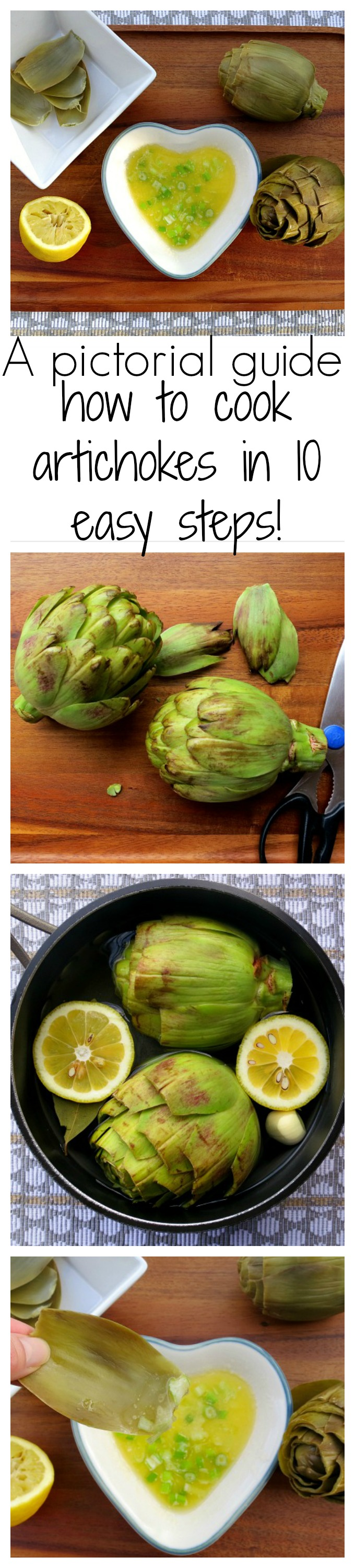 A Pictorial Guide How To Cook Artichokes in Ten Easy Steps