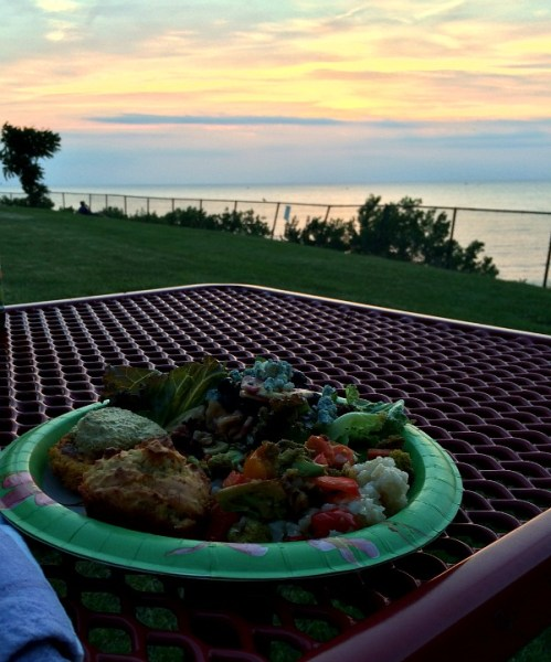 Picnic Dinner with a View