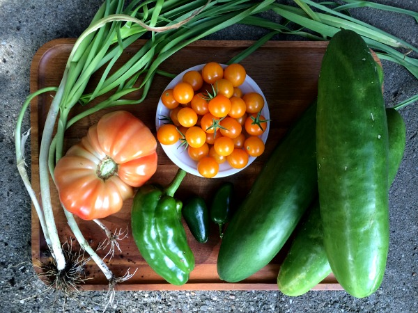 Garden Harvest - Cucumbers, Onions, Tomatoes, Bell Pepper and Jalepeno Peppers