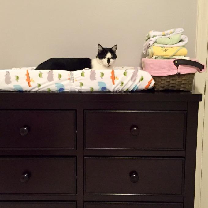 Nursery - Oscar on the Changing Table