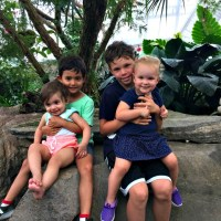 Week in Review: The Beach Vacation Edition (#142)