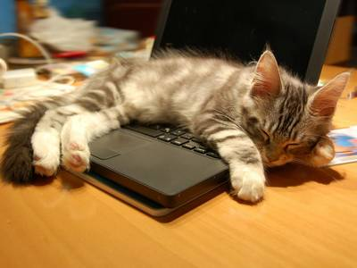 """It's """"Sleepy Monday"""" – Be careful out there"""