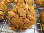 Pumpkin Butterscotch Chip Cookie Close Up