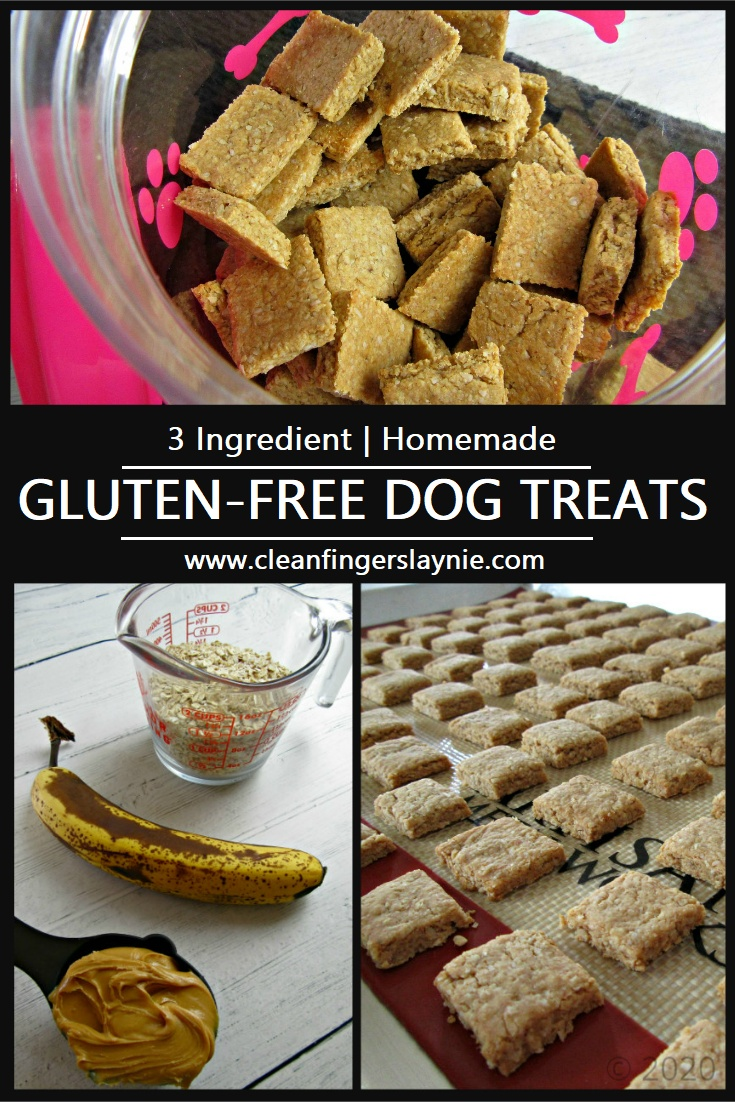 Homemade Gluten-Free Dog Treats -- Clean Fingers Laynie