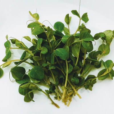 Clean Genes Farm Pea Shoots