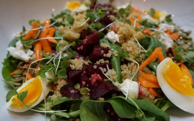 Video_Salad Days of Summer (Colorful Beet Salad)