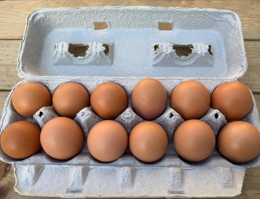 Clean Genes Farm Eggs