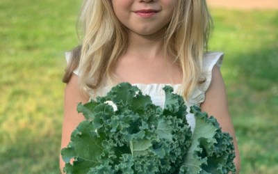 Video_Easy Krispy Kale Chips