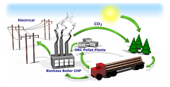 Biomass Renewable Energy ~ Biomass energy clean green renewable « wih