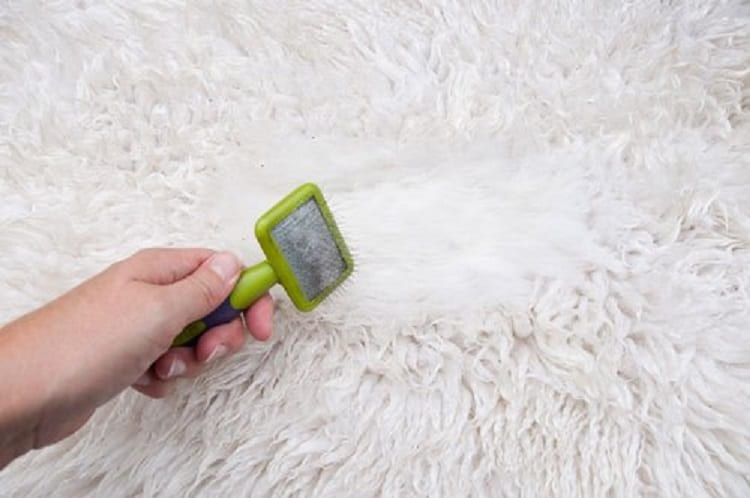 How To Clean A Sheepskin Rug - Miracle Making Guide 1