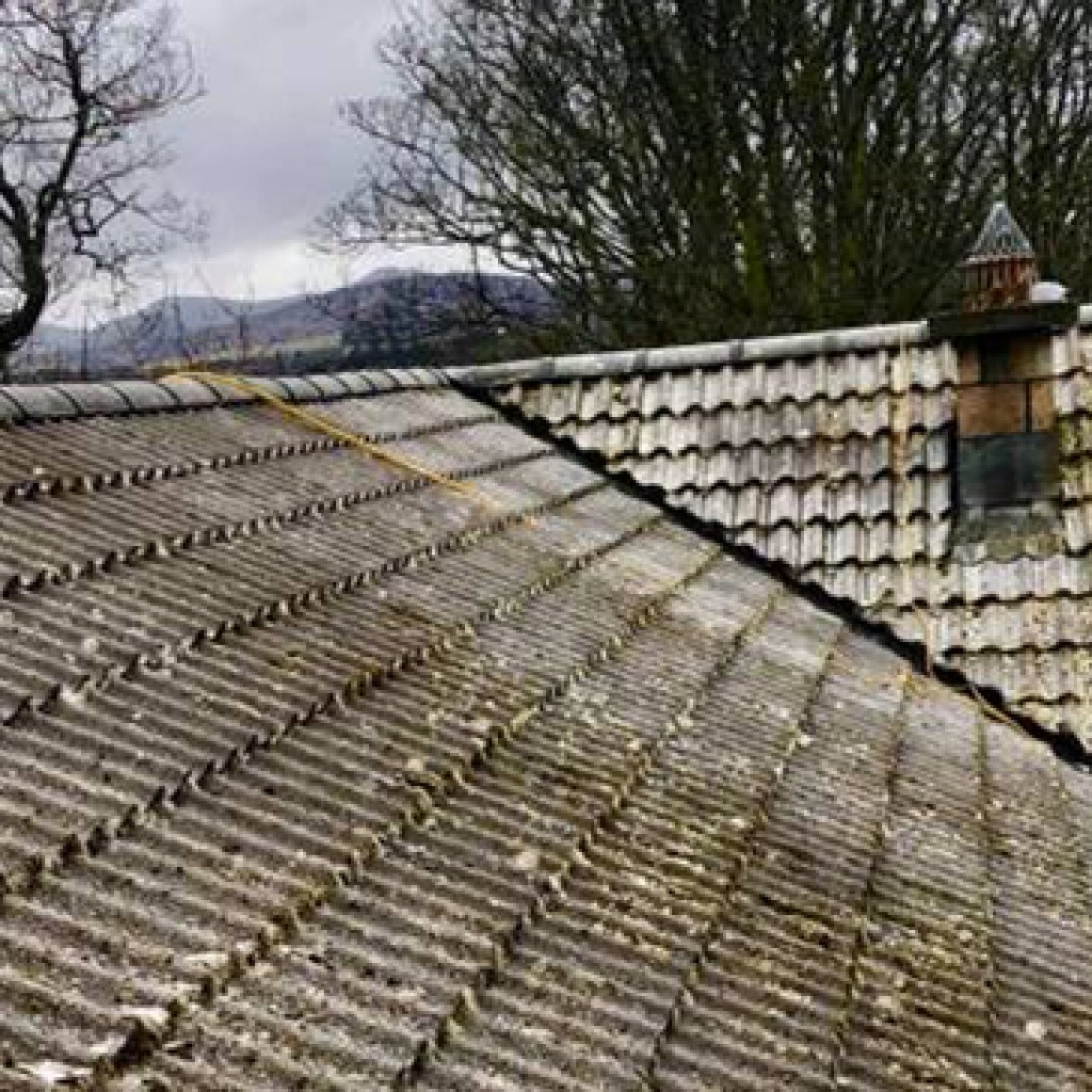 moss removal from mossy roof outdoor cleaning services