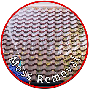 Cleaning Doctor Moss Removal Service outdoor cleaning services