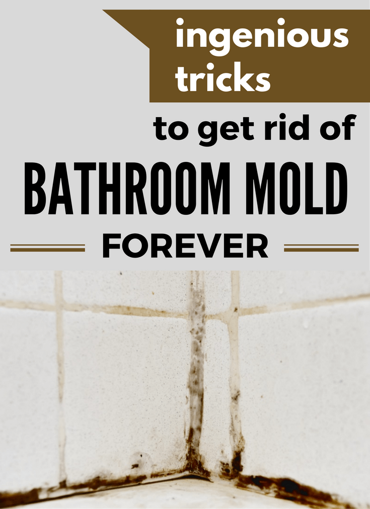 Ingenious Tricks To Get Rid Of Bathroom Mold Forever