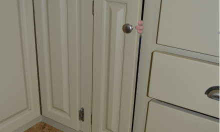 30 Days of the Norwex Enviro Cloth – Day 17 – Cupboard Doors and Knobs