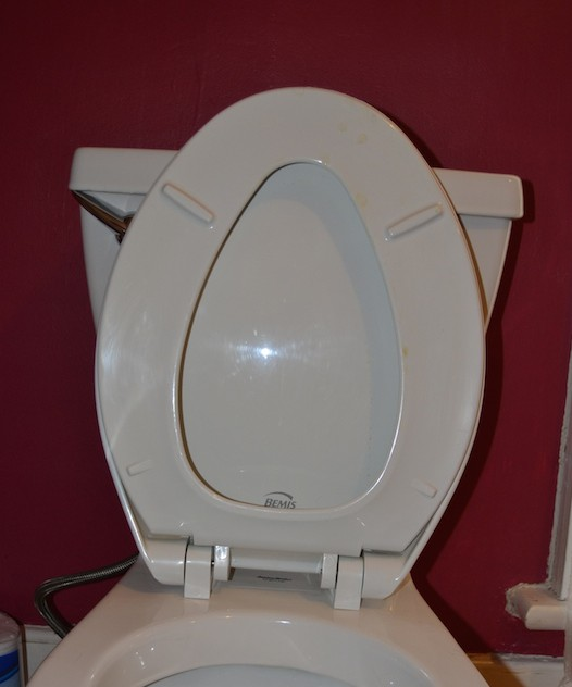 Cleaning 101: How to Clean a Toilet with Norwex or e-cloth®