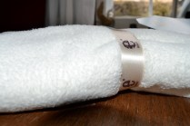 ebody luxury microfiber bath towel by e-cloth2