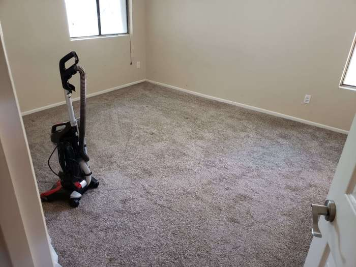 Freshly Vacuumed bedroom
