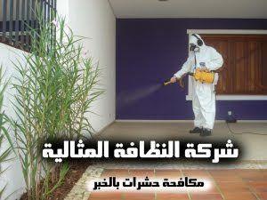 شركة مكافحة حشرات بالخبر 0562198010