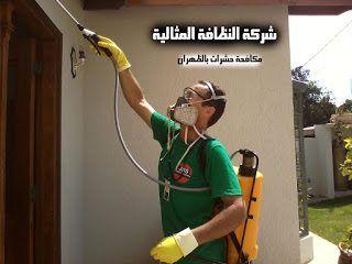 شركة مكافحة حشرات بالظهران 0562198010