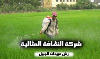 شركة رش مبيدات بالجبيل 0503152005