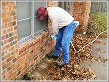 شركة مكافحة النمل الابيض بالبقيق شركة مكافحة النمل الابيض بالبقيق شركة مكافحة النمل الابيض بالبقيق 0562198010 Termite control companys Babakiq