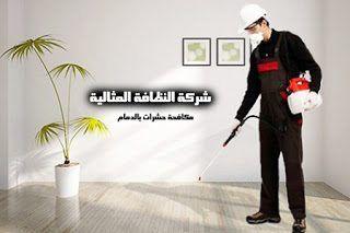 شركة مكافحة حشرات بالدمام 0562198010