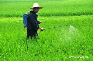 شركة رش مبيدات بالنعيرية شركة رش مبيدات بالنعيرية شركة رش مبيدات بالنعيرية 0502980124 Pesticide Noaryya companys