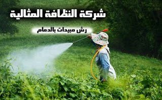 شركة رش مبيدات بالدمام 0503152005
