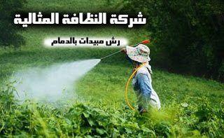 شركة رش مبيد بالدمام شركة رش مبيدات بالدمام شركة رش مبيدات بالدمام 0531390740 Pesticide spraying Company in Dammam