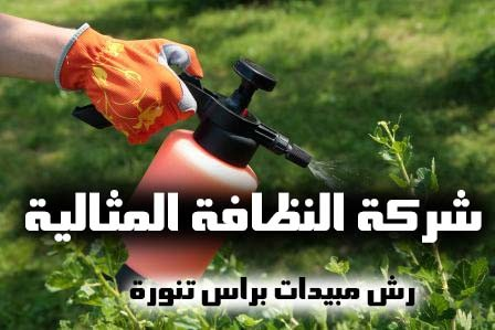 شركة رش مبيدات براس تنورة 0562198010