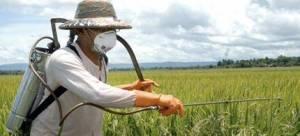 شركة رش مبيدات براس تنورة شركة رش مبيدات براس تنورة شركة رش مبيدات براس تنورة 0562198010 Pesticide spraying Ras Tanura Companys