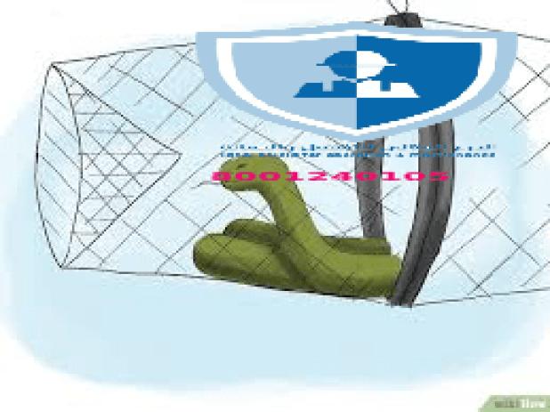 شركة مكافحة ثعبان بالرياض