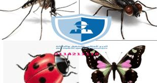 شركة إبادة حشرات بالرياض