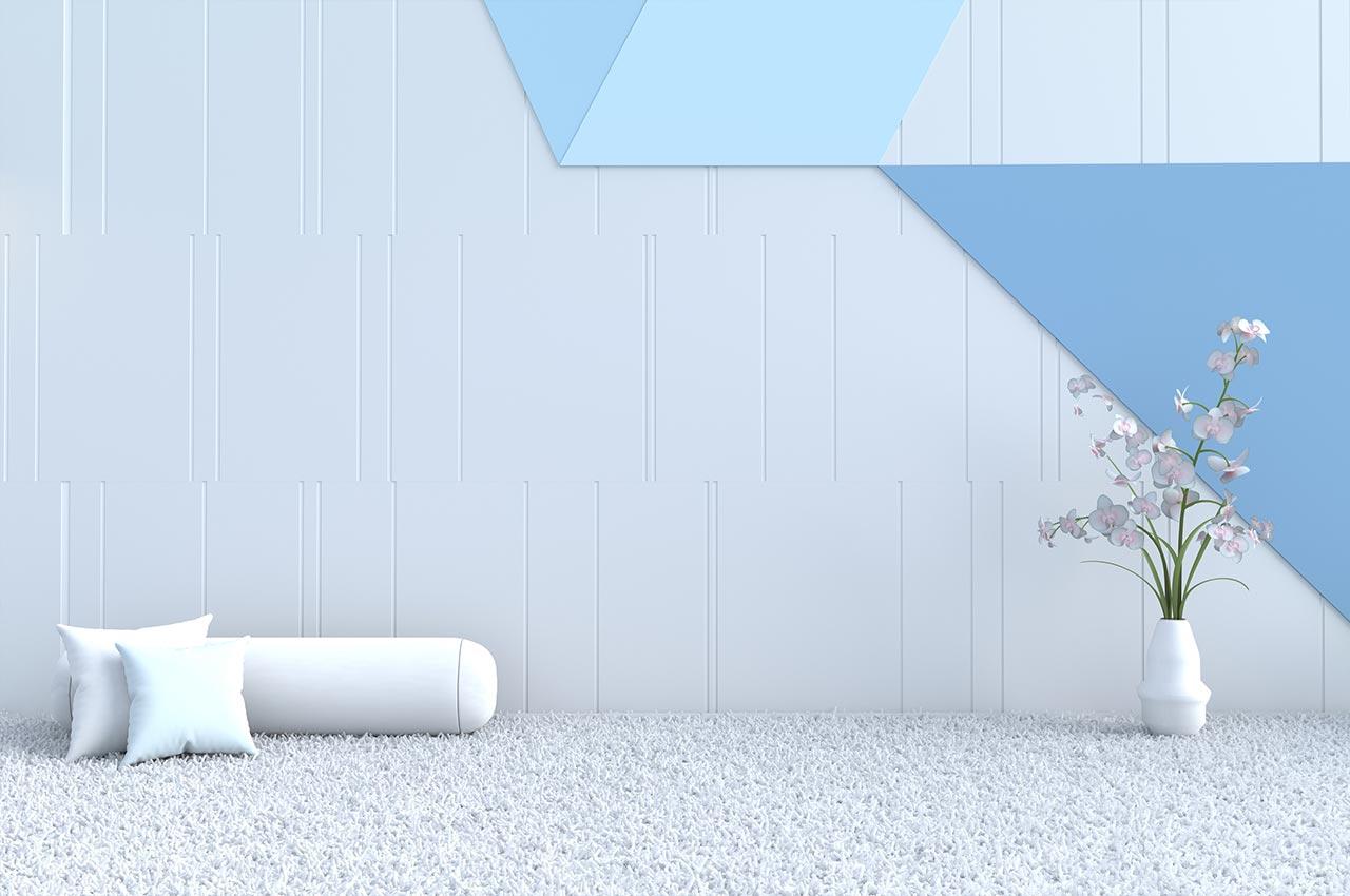 Carpet Cleaning and Repair