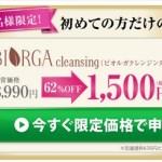 ビオルガクレンジング1500円