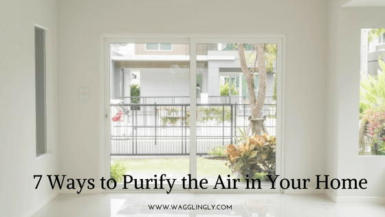 7 Ways to Purify the Air in Your Home