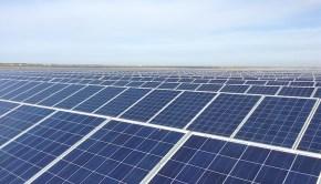 perovo solar farm 13