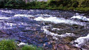 Appalachian River, Cynthia Shahan
