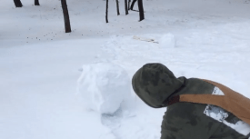 Making of a SnowWolf