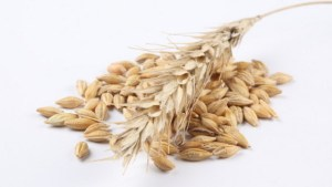 Although oats are hulled, the nutrient-dense bran and germ stay intact.