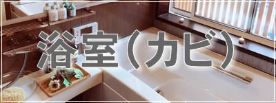 家庭用 お掃除ノウハウ伝授(浴室カビ)