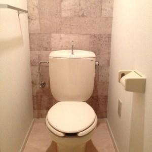 トイレ掃除をラクに♪置いておくだけでトイレの3大悩みを解決できるアイテムの紹介!