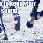 Advice to keep your horse sound