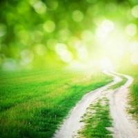 【立ち上がれ!】人生、仕事、努力の名言、いい言葉、前向きな言葉