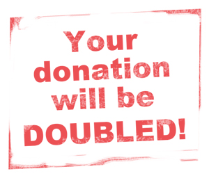 double-your-donation