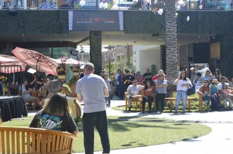 gardenwalk multiculturla festival (26)